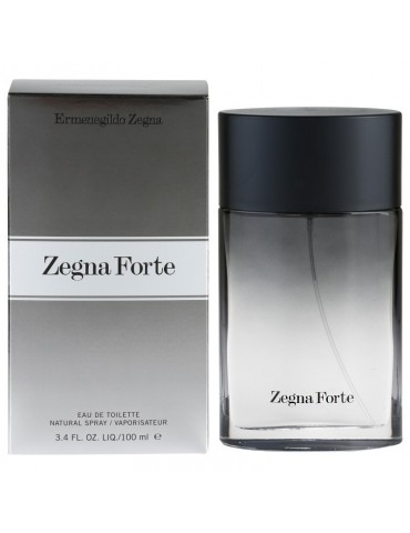 Туалетная вода для мужчин Ermenegildo Zegna Zegne Forte 100 мл