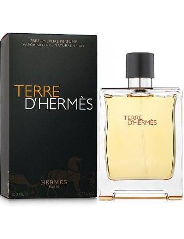 Туалетная вода для мужчин Hermes Terre dHermes 100 мл